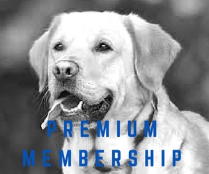 silver-membership-2