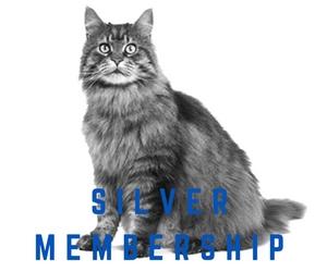 silver-membership-3